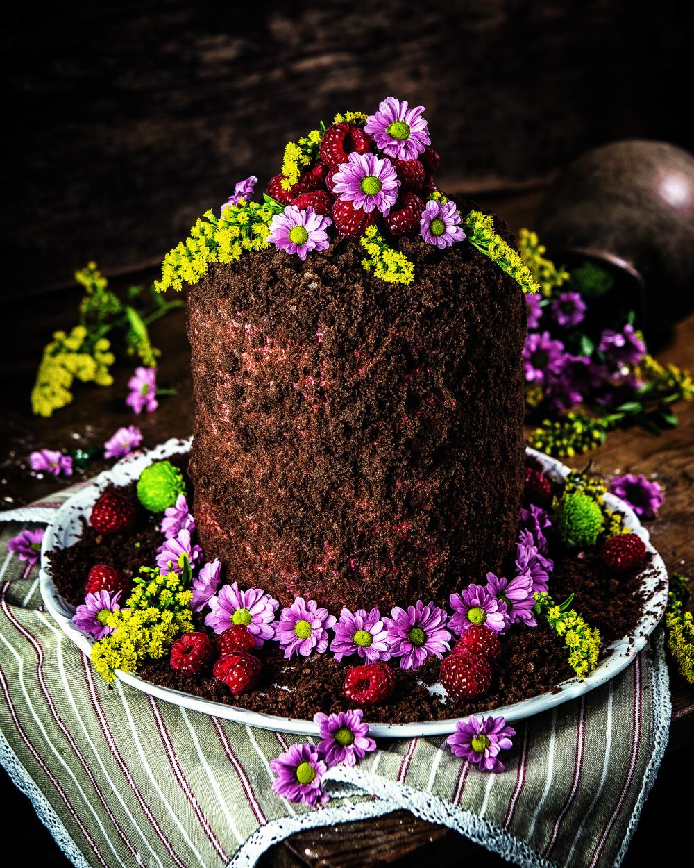 Maulwurf-Torte mit Himbeer-Füllung