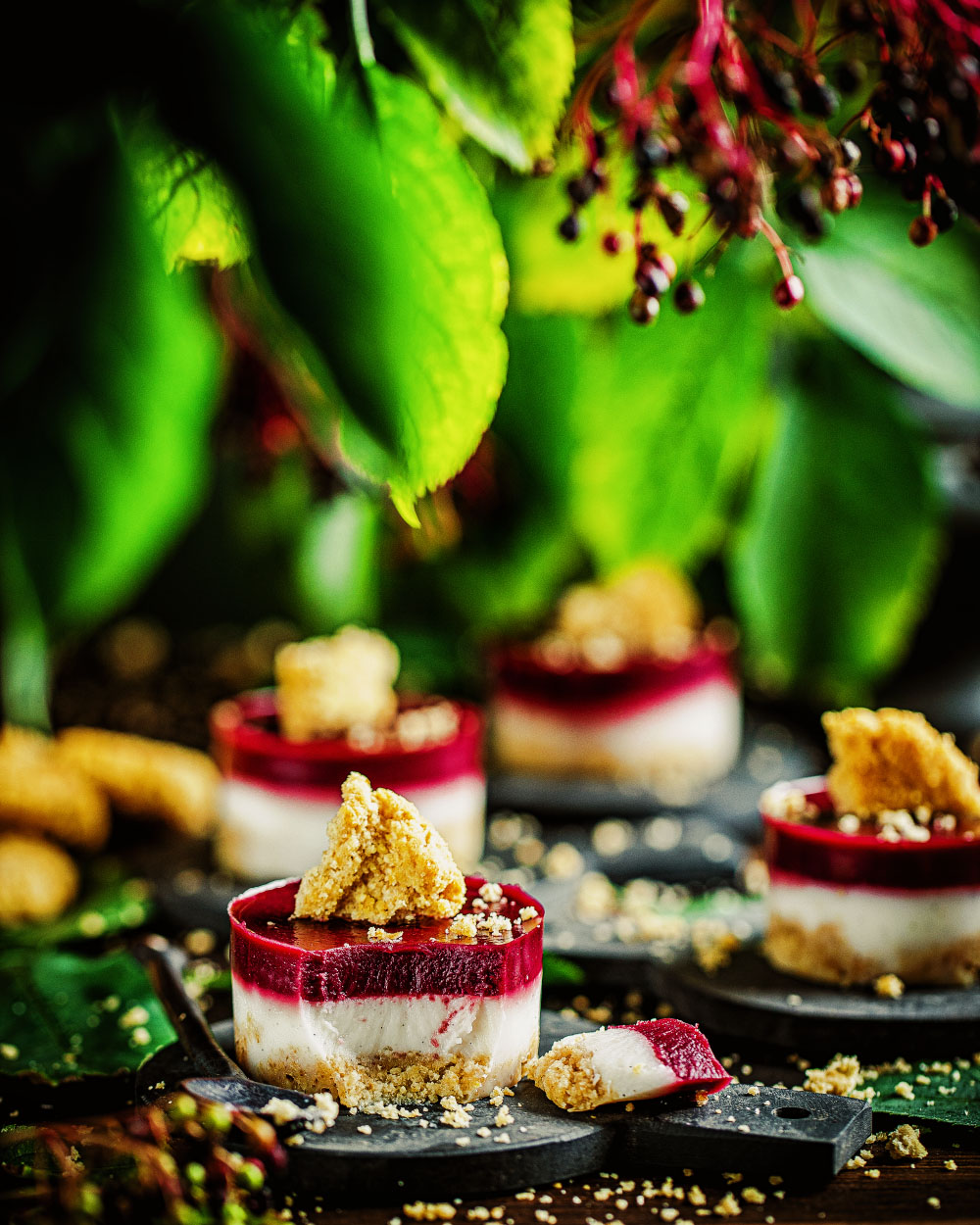 Holunder-Kokos Mini-Cheesecakes No-Bake einfaches rezept maintal #holunderpartyHolunder-Kokos Mini-Cheesecakes No-Bake einfaches rezept maintal #holunderparty