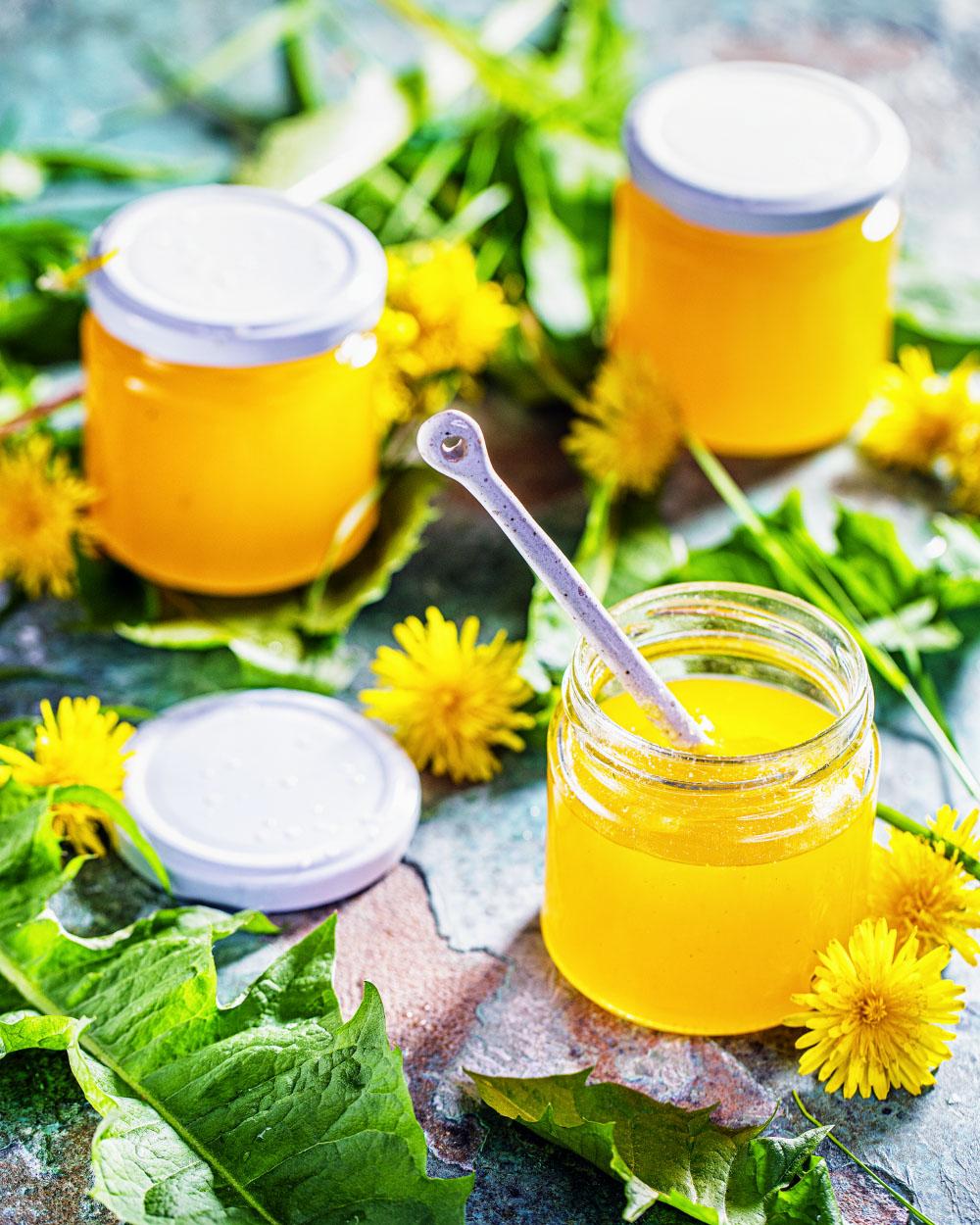 Löwenzahnblüten gelee marmelade einfaches rezept heike herden orange viel vitamin c