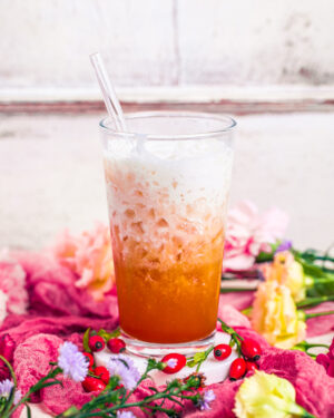Drinks Getränke Hagebutten Konfitüre Limonade Gin-Tonic Cocktail tropisch heike herden maintal